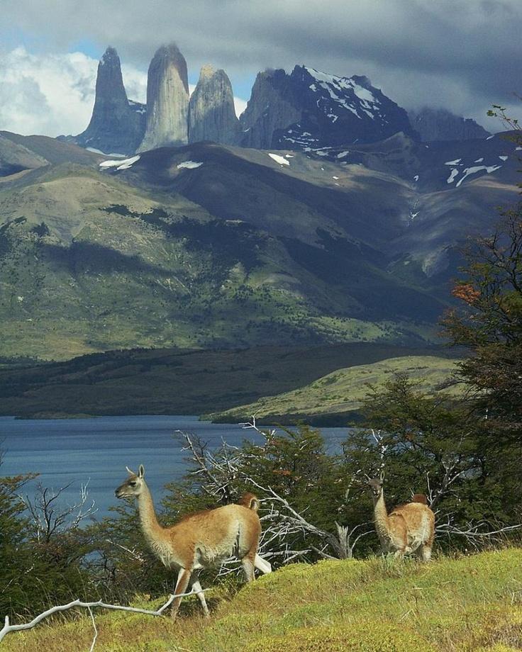 Torres del Paine!