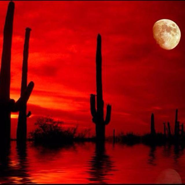 red moon desert xp - photo #15