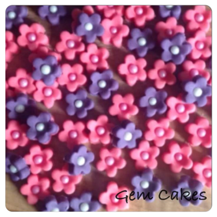 Edible Hot Pink and Purple Blossom Flowers.