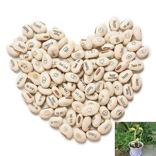 Magic beans. Magic Message Beans. Funny gift. Surprise gift. 50% OFF BUY 3 +