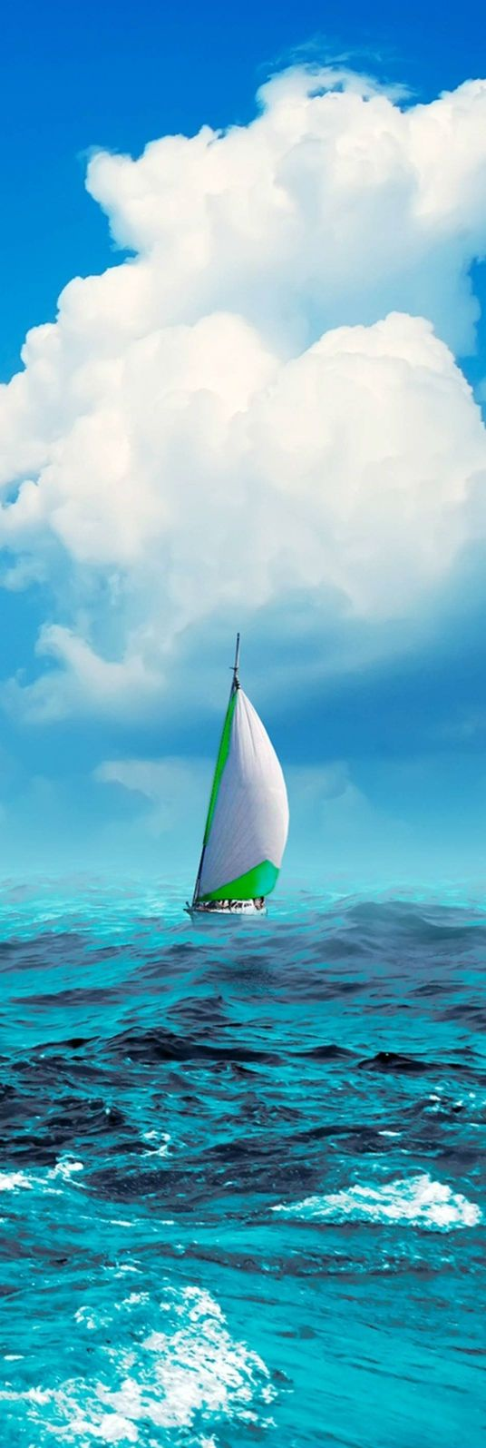 Sailboat in the Sea #sailing