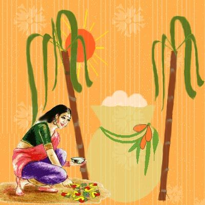 Festivals of India - Pongal: The Harvest Festival