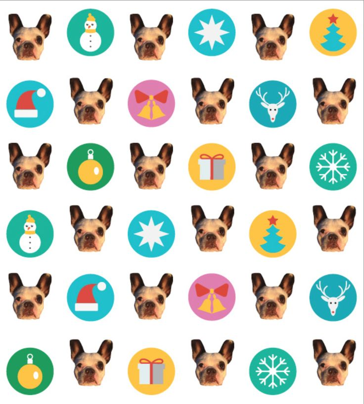 9 Best Doggie Designs Images On Pinterest Gift Wrapping