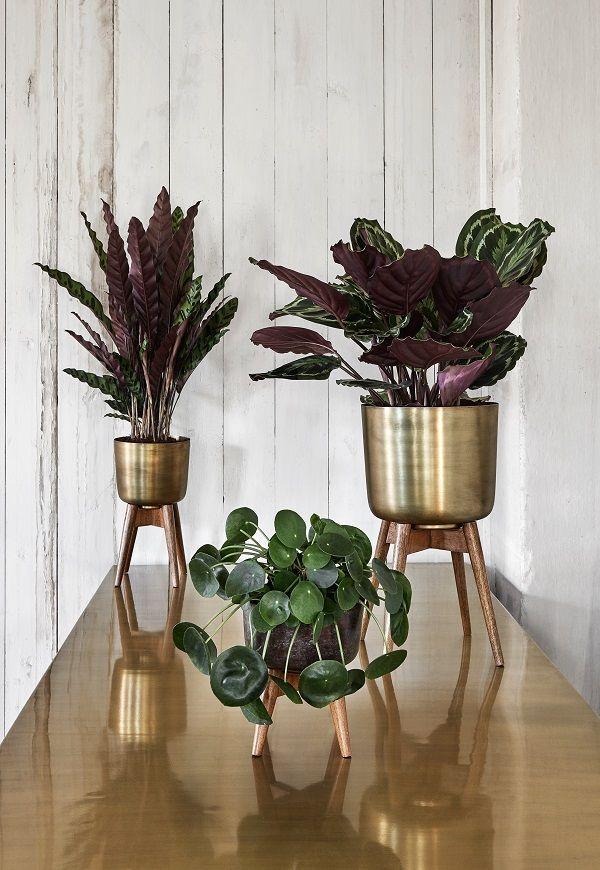 Brass planters on legs via mia fleur