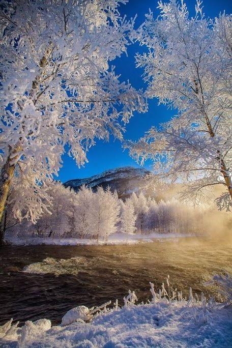 Рогаланд, Норвегия  #beauty #beautiful #nature