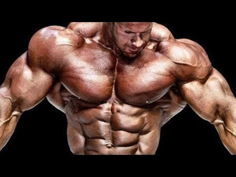 Jay Cutler - VISION INTO REALITY (Bodybuilding Motivation) - YouTube