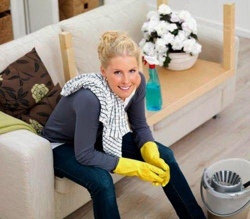 26 eco pages             : Επτά έξυπνοι τρόποι να απαλλαγείτε από τη σκόνη στ...