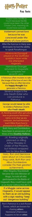 Im Harry Potter, Harry Harry Potter...: Books, Stuff, Potterfact, Hp Facts, Potter Fun, Harry Potter Facts, Fun Facts, Potterhead, Funfact
