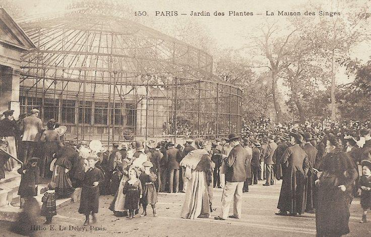 """Jardin des Plantes - Paris 5ème La """"Maison des Singes"""" au Jardin des Plantes (carte postale, vers 1900)"""