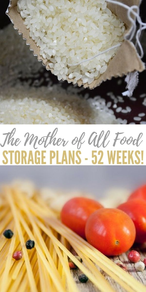 Best 25 Food Storage Ideas On Pinterest Kinds Of Fruits Basic Grocery List And Produce