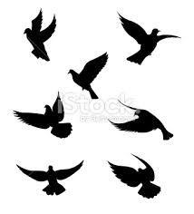 """Résultat de recherche d'images pour """"silhouette oiseau"""""""