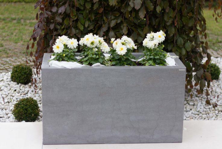 naturali pietra di savoia grigia