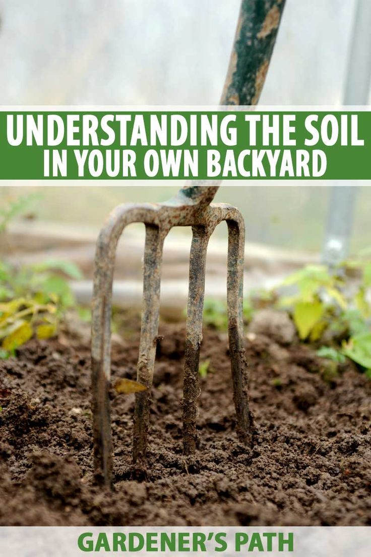 Understanding The Soil In Your Own Backyard Gardener S Path Soil Improvement Garden Soil Organic Vegetable Garden