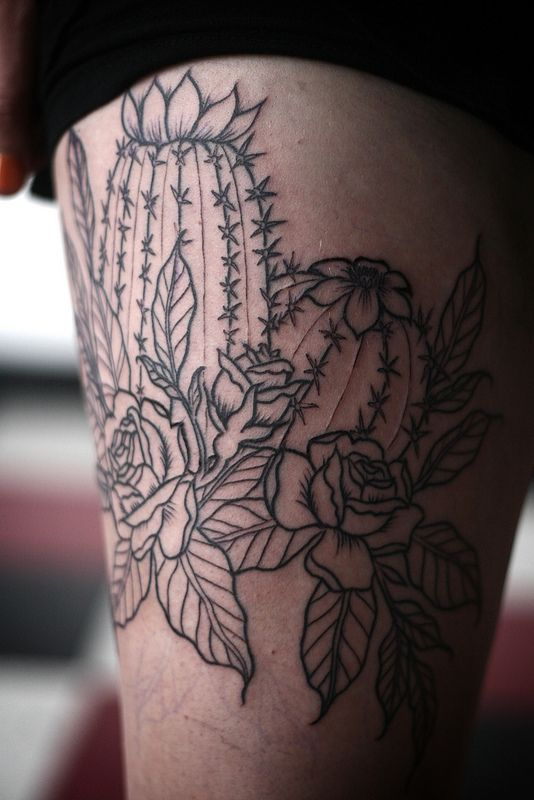 rose and cactus outline