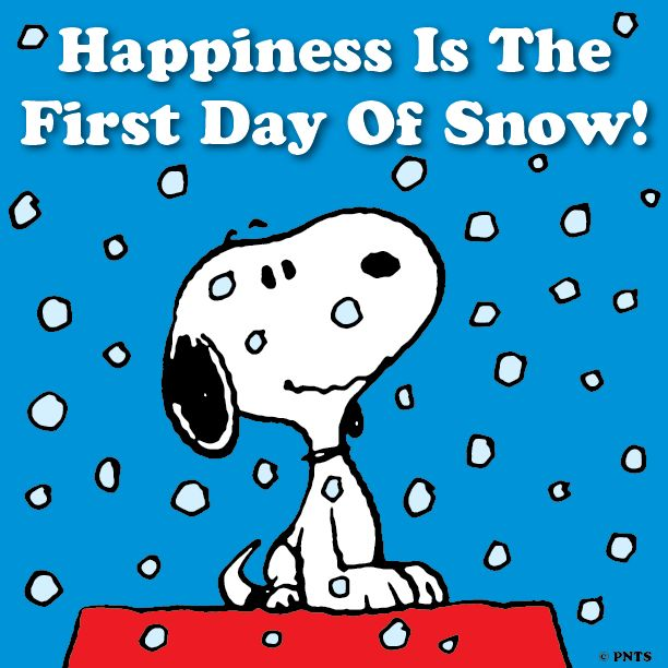 Happiness is the first day of snow.