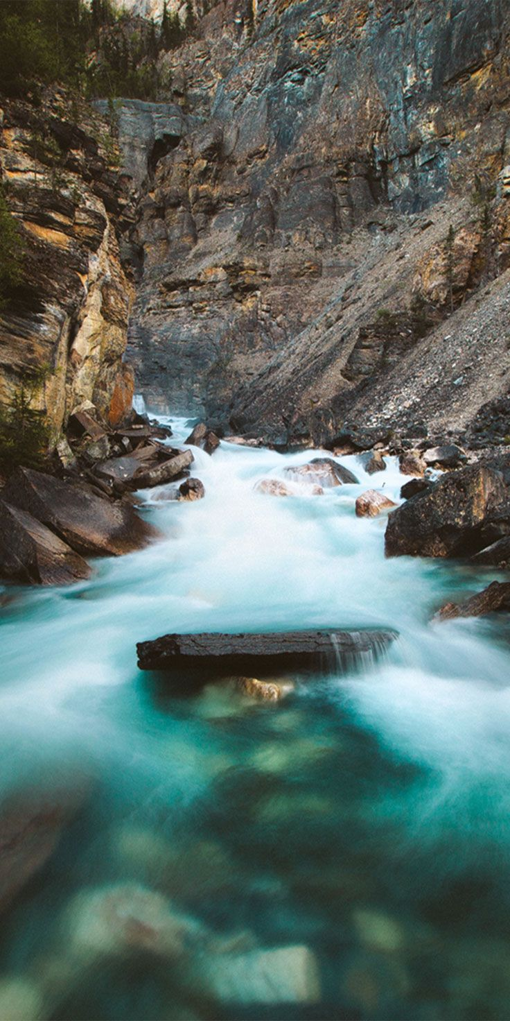 Streams of aqua in Mt Robson - by Thurston Photo