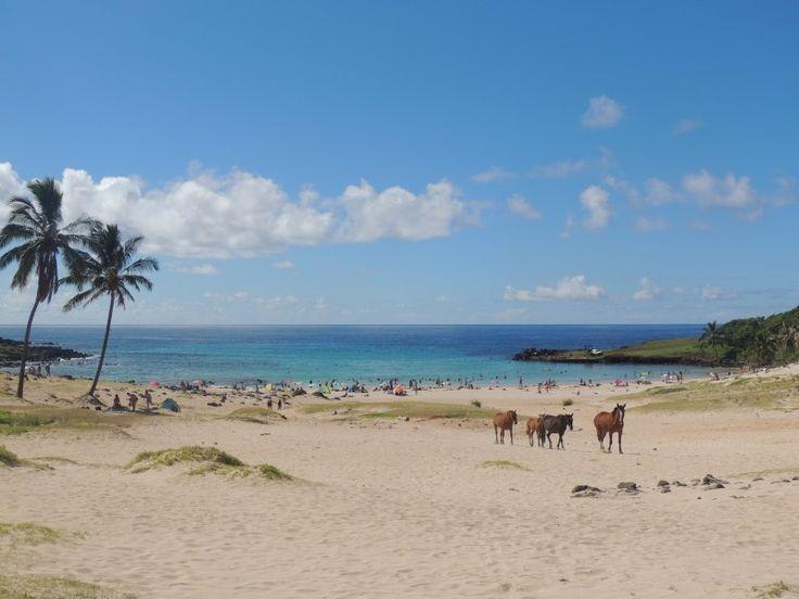 Praia Anakena, Ilha de Pascoa