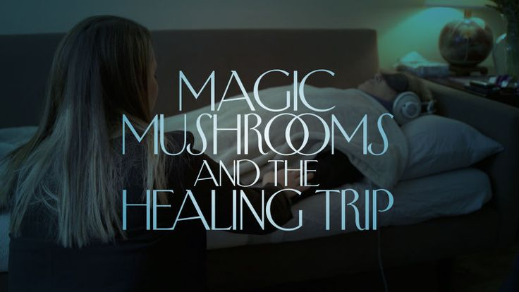 Eddie Marritz, a cinematographer and photographer in remission from small-cell carcinoma, was a participant in one of N.Y.U.'s Psilocybin Cancer Anxiety research studies. Marritz, and the researchers, take us through the experience. by thenewyorker #Science #Medicine #Psilocybin_Cancer_Treatment