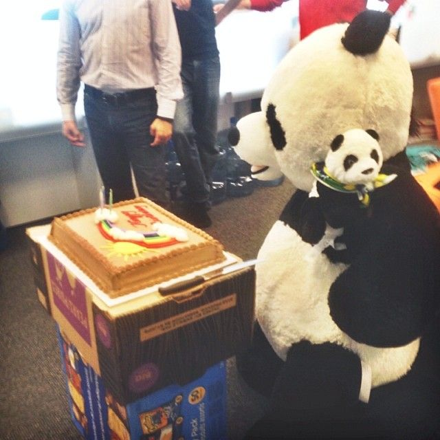Panda's first birthday <3