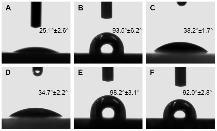 Figure 4 The shapes of water drops and contact angle on the (A) BC, (B) BC/Col-p before elution, (C) BC/Col-p after elution, (D) DBC, (E) DBC/Col-p before elution, and (F) BC/Col-p after elution (here, the DO of DBC is 59.7%).