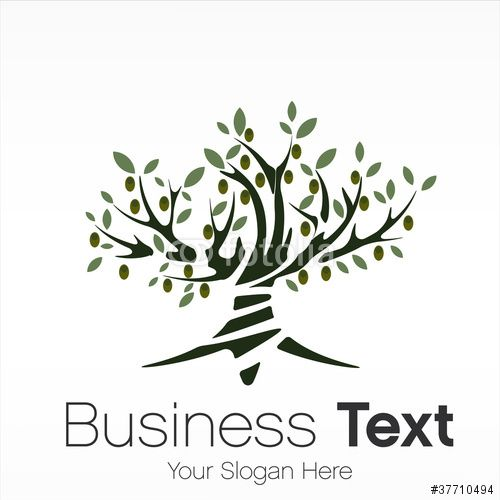 Vecteur : logo arbre/ olivier