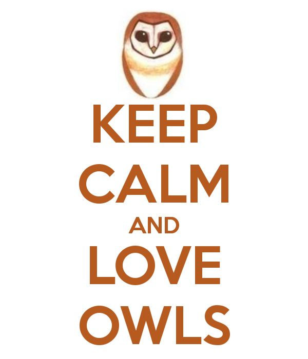 KEEP CALM AND LOVE OWLS - lol