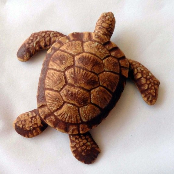 Best images about wood carvings turtles on pinterest
