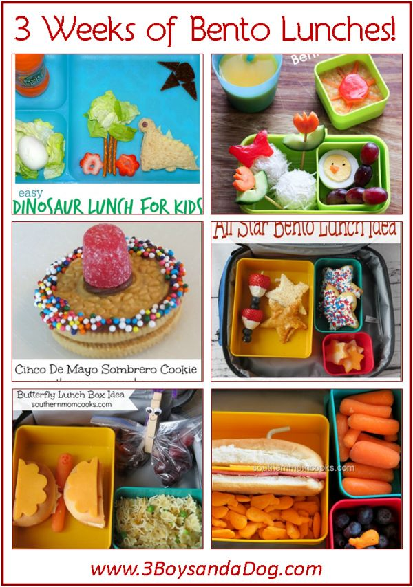 123 best images about lunch on pinterest school lunch box healthy lunch ideas and kid lunches. Black Bedroom Furniture Sets. Home Design Ideas