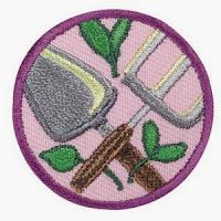 Girl Scout Leader 101: Junior: Gardener Badge, what one leader did, has a badge requirements PDF link
