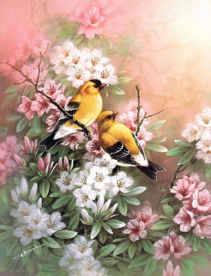 Картинки с цветами и птицами для декупажа