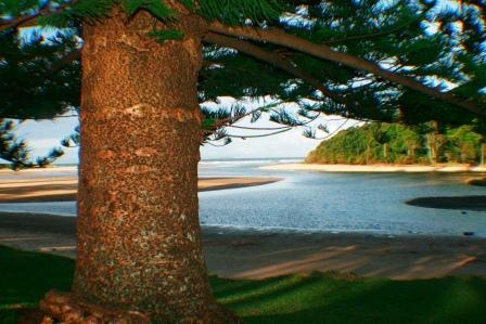 Moonee Beach Reserve