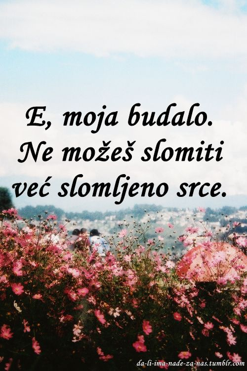 17 Best Images About Serbian Quotes On Pinterest