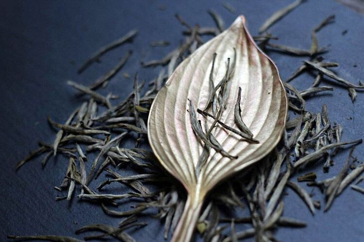 Silver Needle Tea Co.