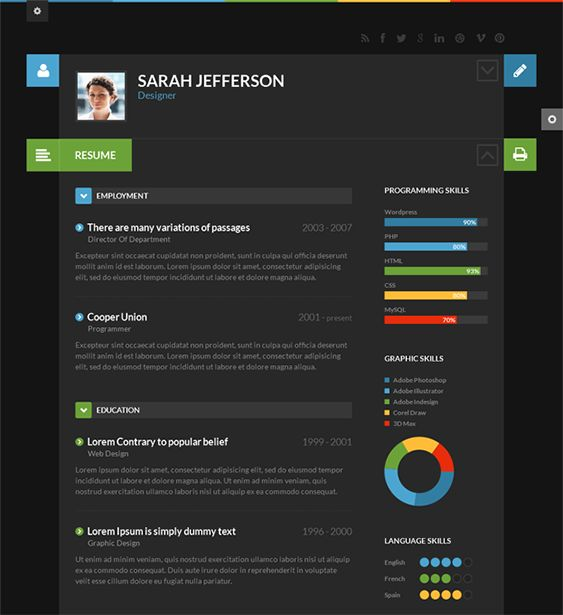 Best More Of The Best Resume Cv  Vcard Wordpress Themes