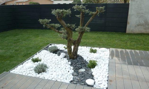 Cailloux Blanc Jardin Luxury Frais Amenagement Jardin Gravier