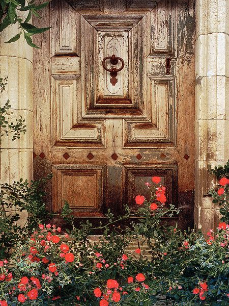 French Door With Roses Provence France