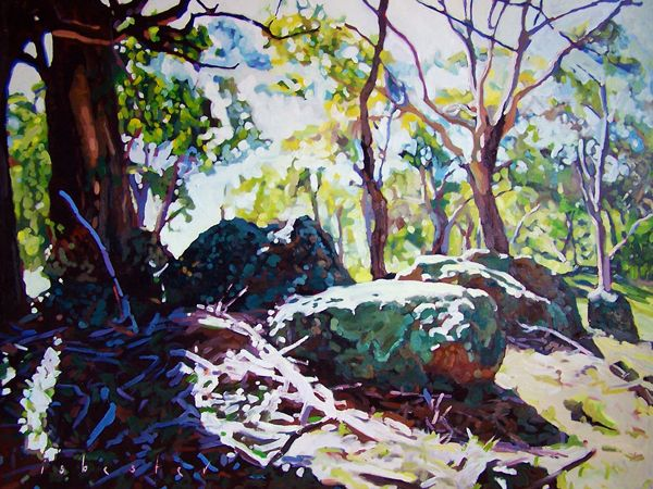 'Moss and Rocks' by David Isbester.  Limited Edition Print available