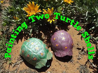 A Pretty Talent Blog: Painting Two Turtle Shells