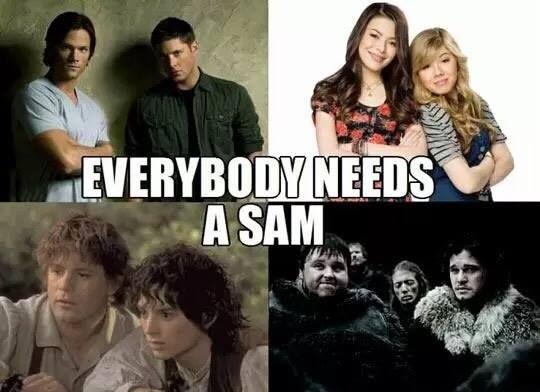 Everybody Needs a Sam