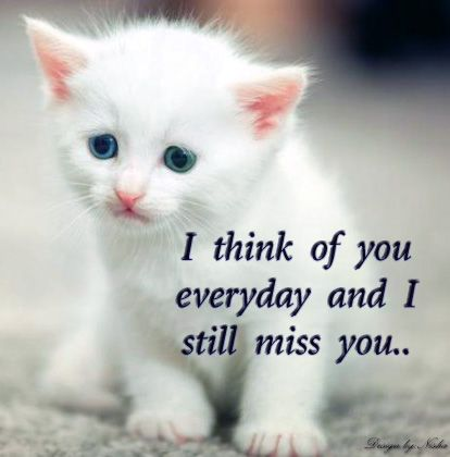 Love greetings, creative arts, Emotional greetings: Heart touching miss u wallpaper ! I miss u card ! missing crying quotes ! I miss u quotes ! Missing u scraps