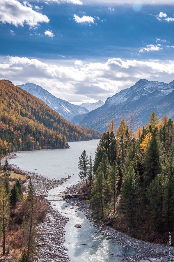 Lake Kucherla is located in the Altai Mountains and Katun Nature Reserve of Siberia
