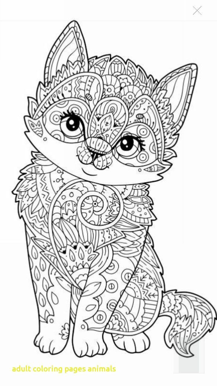 Animal Coloring Book Pages Coloring Book Animal Coloring Books For Adults Book Pages Cat Coloring Book Detailed Coloring Pages Dog Coloring Page