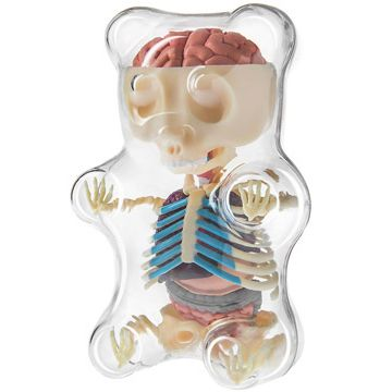 Ever wondered what's inside a gummy bear to make them so chewy? They're all…