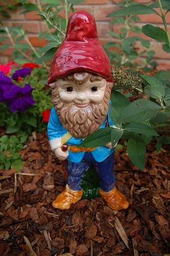 How to Create a Gnome Garden | GNOMES.... Look around you ...