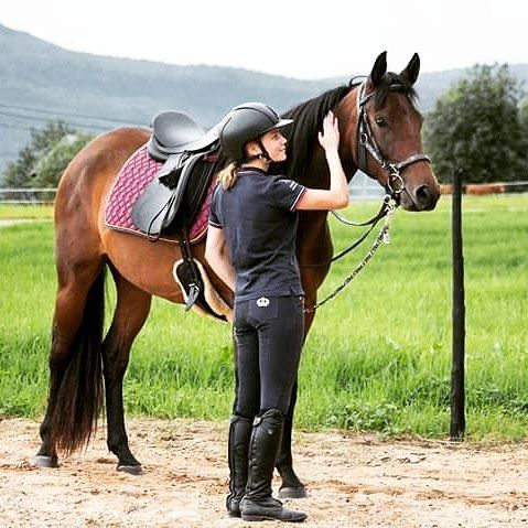 Leirmo's Mistress f. 2014 😍 #coronado #mare #youngster #innridning #unghest #superjente #work #passion #progress #sandiegoconnection #sdlocals #coronadolocals - posted by Tone Liabø https://www.instagram.com/toneliabo. See more post on Coronado at http://coronadolocals.com