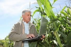 Oferta de Empleo: Ingeniero Agrónomo para el Ministerio de Agricultura, Alimentación y Medio Ambiente
