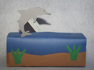 Moving Dolphin Craft from a tissue box
