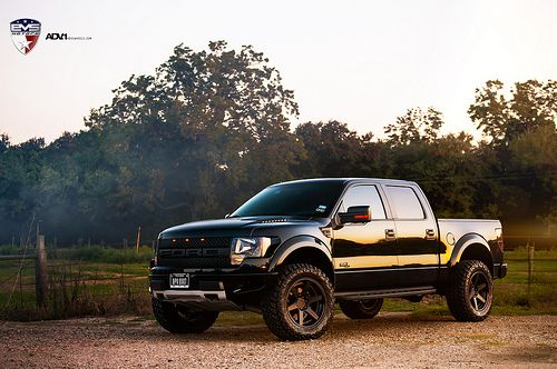 Vehicle: Ford Raptor 1. A durable truck that has a lot of horse power.
