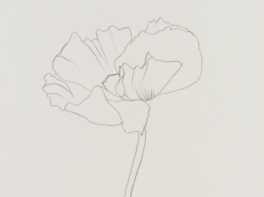Line Art Flower Drawing : Best line drawing pattern images embroidery