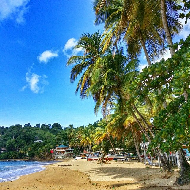 Tobago Island: 145 Best Images About ♥ TRINIDAD AND TOBAGO = MY LAND ♥ On